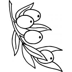 Dibujo para el grabado Láser